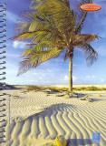 Capa Sulamericana de Cadernos paripueiras coleção 2006
