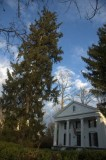 Residence and Douglas tree