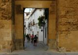 Almodóbar's Door