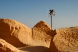 Door of The Desert - Douz