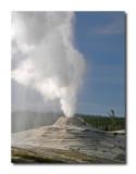Lion Group Eruption