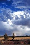 Storm on Steens