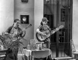 Mazatlan Troubadores.jpg