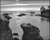 Shell Beach .jpg