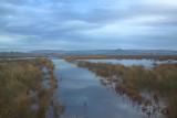 The main drain on the Crom Mhin marsh