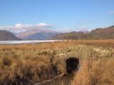 Crom Mhin Bridge, Loch Lomond NNR