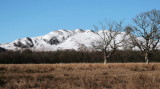 Conic Hill from Gartfairn Woods, Loch Lomond NNR
