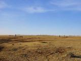 Searching for the Sidamo Lark, Liben Plains
