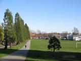 Jones Park, East Vancouver