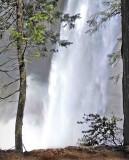 Vernal falls ,Yosemite Nat'l.Park