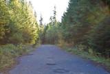 Oct 22 07 Larch Mt  Mt Hood-4.jpg