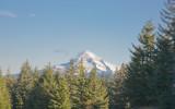 Oct 22 07 Larch Mt  Mt Hood-5.jpg