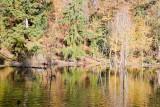 Critter Lake and Columbia River Nov 10 07