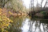 A River Park In Hillsboro, OR -- Nov. 20 07