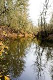 Nov 20 07 Hillsboro river park-18.jpg