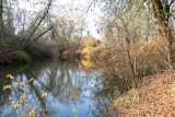Nov 20 07 Hillsboro river park-34.jpg