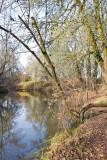 Nov 20 07 Hillsboro river park-44.jpg