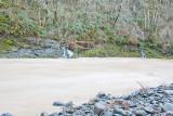 Dec 5 07 Oregon flood area-17.jpg