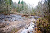Dec 5 07 Oregon flood area-2.jpg