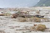 Oregon Flood Area: New Trip -- December 14 07