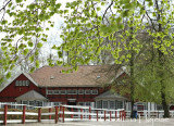 Klampenborg 2010-05-01 (Dansk Jockey Club Cup & KG Store Sprint) 3. løbsdag