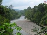 Tangkahan river