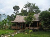 Guest house, Tangkahan