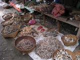 Dried fish, Mrauk U market