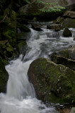 Cascade on the Lost river