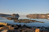 Low tide at Manchester harbor