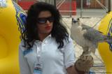V8_Bahrain_2010_1924ew.jpg