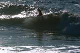 12/10/07 Ocean Beach