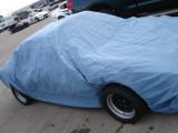 Smurf Car - Texas Tour '10
