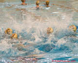 Queen's Synchronized Swimming 01939 copy.jpg