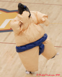 Queen's Sumo Follies 2009-2010