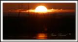 LEVER DE SOLEIL SUR LE MARAIS  /  SUNRISE ON THE MARSH _MG_9784a