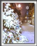 _MG_3328a  + 59.jpg -  LE PETIT CHAMPLAIN AU TEMPS DES FÊTES  /  IN CHRISTMAS TIME