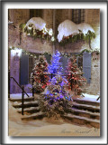 PLACE ROYALE,  MAISON PIERRE  BRUNEAU DANS LE TEMPS DES FÊTES  / PIERRE BRUNEAU HOUSE IN CHRISTMAS TIME   _MG_3383a +72