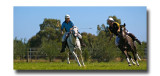 Polocross 127.jpg
