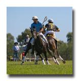Polocross 139.jpg