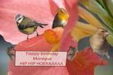 gelukkige verjaardag Monique