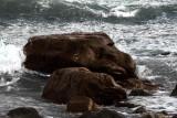 resolute in wild water