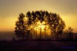 Sunrise Washburn Road.jpg