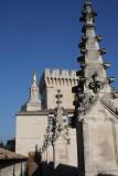 Palais des Papes and Notre Dame des Doms
