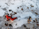Red Shoe On Ice