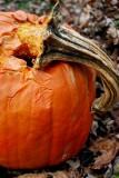 Defeated Pumpkin