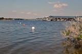 Swim Zone-0277