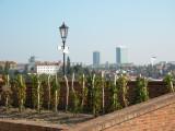 View of Prague from Vyšehrad ..