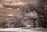Farm Land Oswego, IL USA