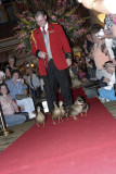 The Peabody Ducks and Their Duckmaster